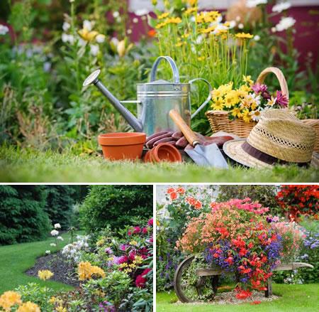 Ginkgo paisajismo primavera en el jard n detalles para for Paisajismo jardines fotos